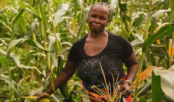Tanzania small holder farmer